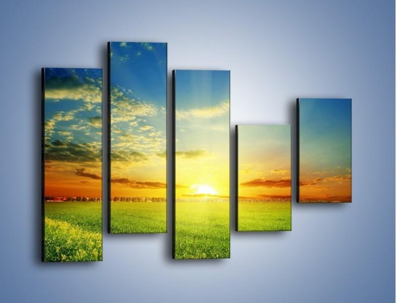 Obraz na płótnie – Łąka pełna zieleni – pięcioczęściowy KN542W4