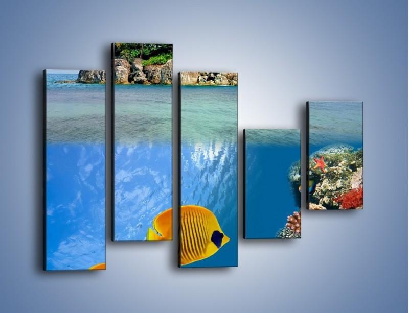 Obraz na płótnie – Podwodny świat na wyspie – pięcioczęściowy KN586W4