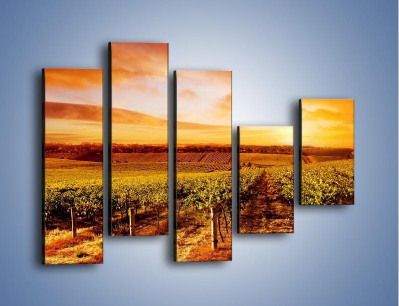 Obraz na płótnie – Ziemia i uprawy – pięcioczęściowy KN673W4