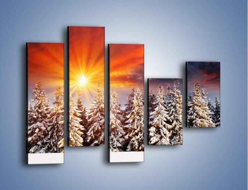 Obraz na płótnie – Choinki w środku zimy – pięcioczęściowy KN682W4