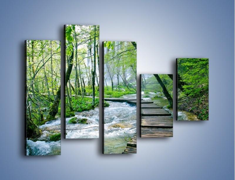 Obraz na płótnie – Drewniana kładką przez potok – pięcioczęściowy KN720W4