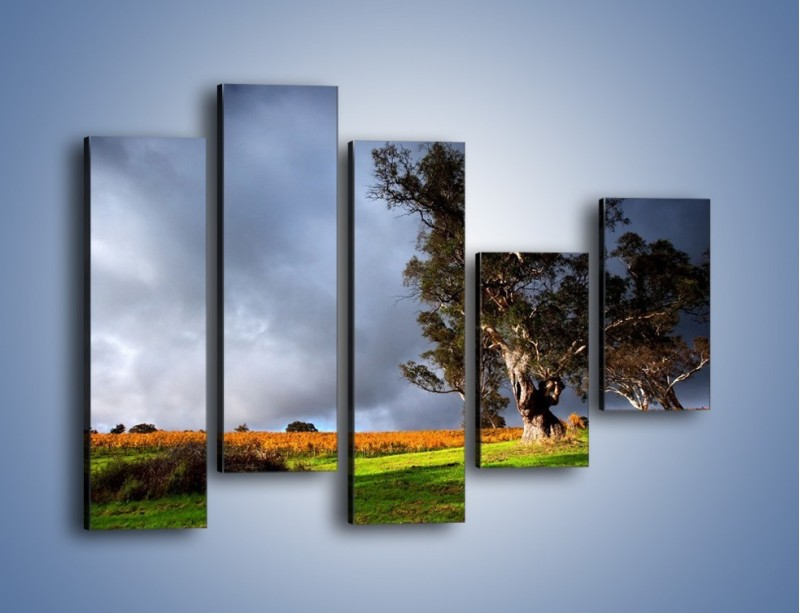 Obraz na płótnie – Burzowe chmury nad polaną – pięcioczęściowy KN748W4