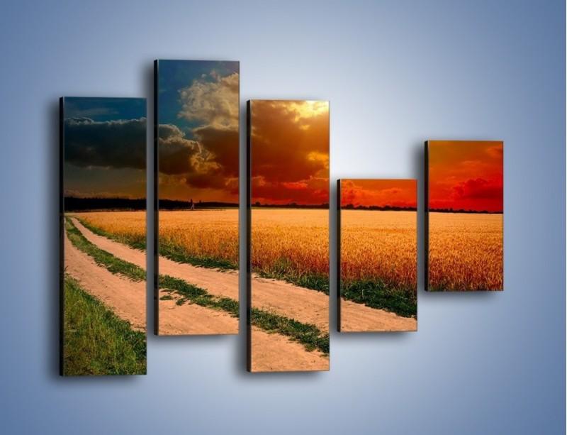 Obraz na płótnie – Zbożowa polana i jej cały urok – pięcioczęściowy KN776W4