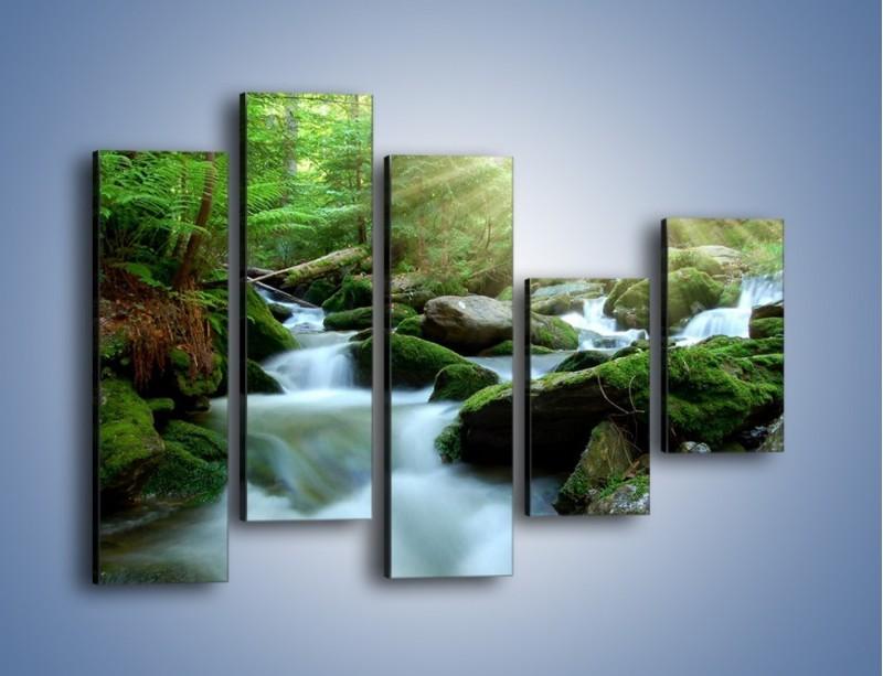Obraz na płótnie – Silny potok w środku lasu – pięcioczęściowy KN861W4