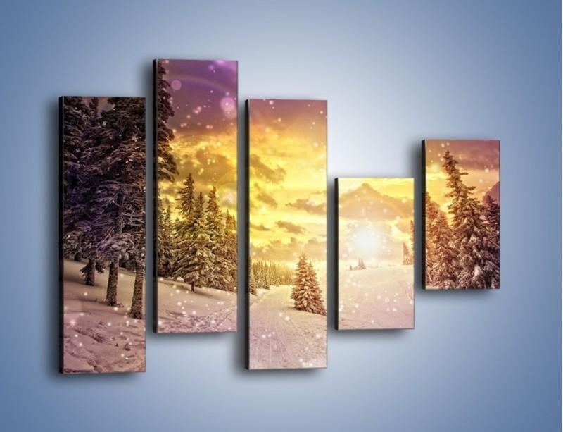 Obraz na płótnie – Śnieżna kraina – pięcioczęściowy KN868W4