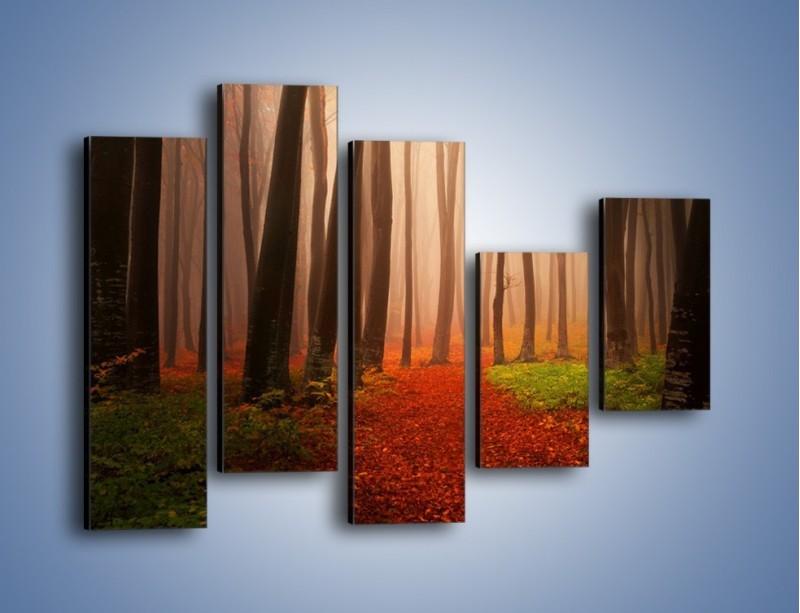 Obraz na płótnie – Las pełen tajemnic – pięcioczęściowy KN909W4