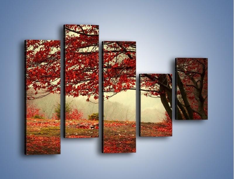 Obraz na płótnie – Spadające liście z drzew – pięcioczęściowy KN910W4