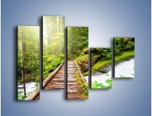 Obraz na płótnie – Bezpieczna droga przez las – pięcioczęściowy KN922W4