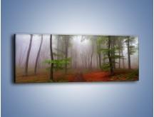 Obraz na płótnie – Budzący się lasek – jednoczęściowy panoramiczny KN1285A