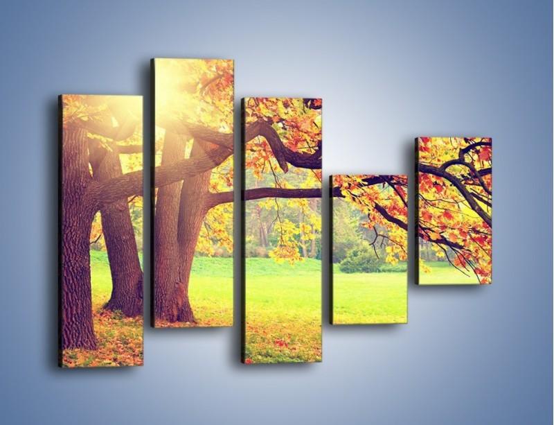 Obraz na płótnie – Jesienią w parku też jest pięknie – pięcioczęściowy KN967W4