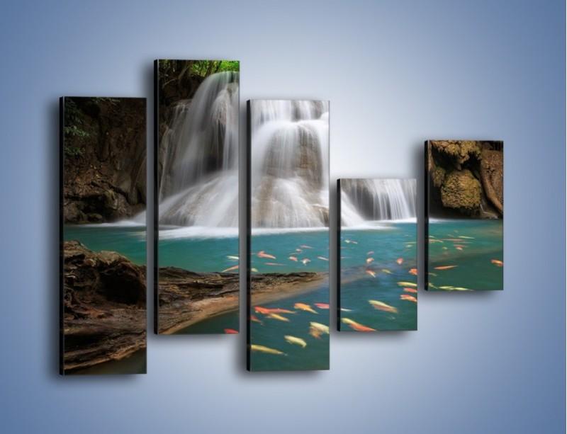 Obraz na płótnie – Wodospad i kolorowe rybki – pięcioczęściowy KN994W4