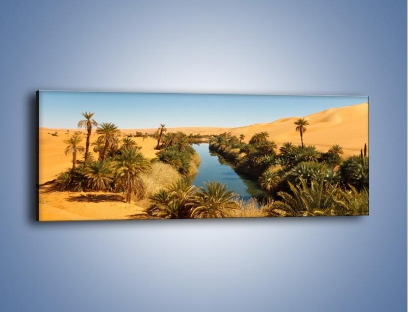 Obraz na płótnie – Woda woda na pustyni – jednoczęściowy panoramiczny KN1294A