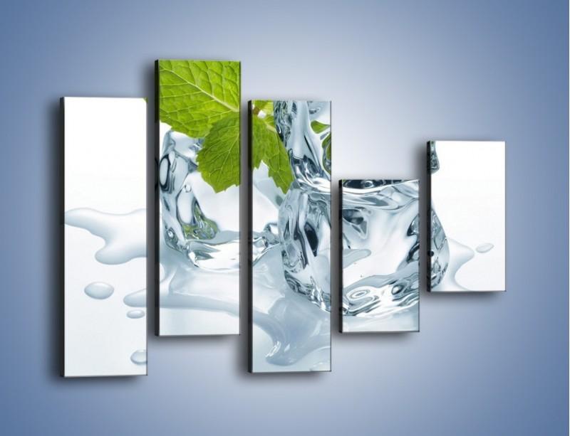Obraz na płótnie – Kostki lodu i mięta – pięcioczęściowy O034W4
