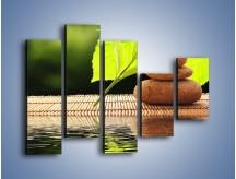 Obraz na płótnie – Liście odbite w lustrze wodnym – pięcioczęściowy O149W4