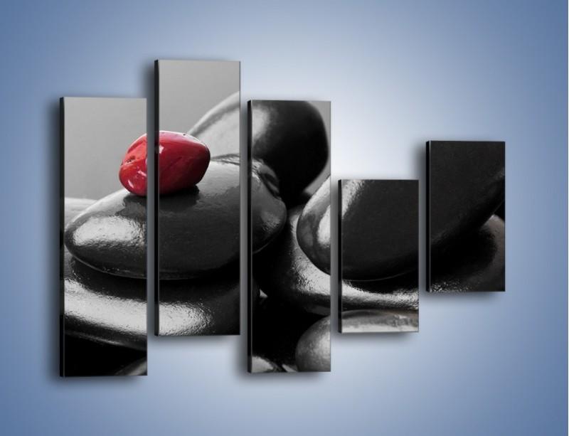 Obraz na płótnie – Czerwień wśród czarności – pięcioczęściowy O212W4