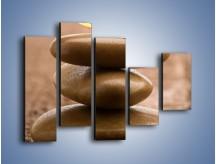 Obraz na płótnie – Delikatne piórko na twardym podłożu – pięcioczęściowy O215W4