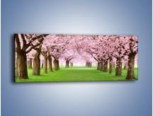 Obraz na płótnie – Aleja zakochanych – jednoczęściowy panoramiczny KN1299A