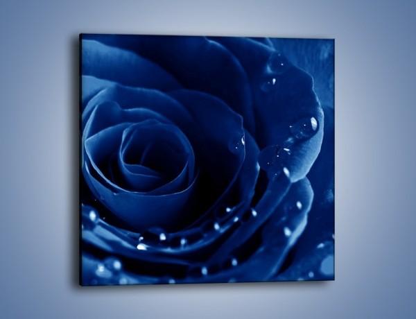 Obraz na płótnie – Noc odbita w płatkach róż – jednoczęściowy kwadratowy K176