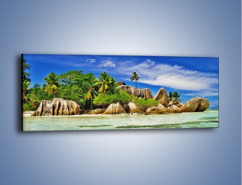 Obraz na płótnie – Tropiki i ich wysokości – jednoczęściowy panoramiczny KN1306A