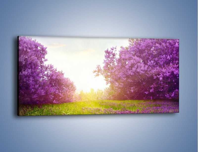 Obraz na płótnie – Ukryć się w lawendzie – jednoczęściowy panoramiczny KN1307A