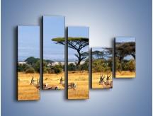 Obraz na płótnie – Antylopy w słonecznej afryce – pięcioczęściowy Z003W4