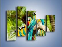 Obraz na płótnie – Kolorowe papugi w szeregu – pięcioczęściowy Z029W4