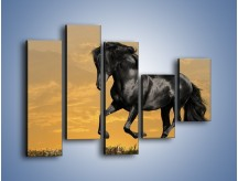 Obraz na płótnie – Bieg z koniem po polanie – pięcioczęściowy Z057W4