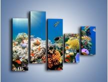 Obraz na płótnie – Fauna i kolorowi towarzysze – pięcioczęściowy Z116W4