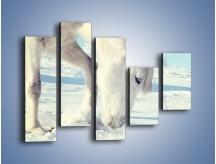 Obraz na płótnie – Arab w śnieżnym puchu – pięcioczęściowy Z144W4