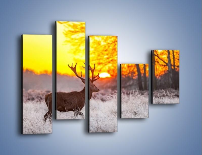 Obraz na płótnie – Jeleń o zachodzie słońca – pięcioczęściowy Z164W4
