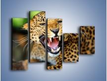 Obraz na płótnie – Jaguar z pazurem – pięcioczęściowy Z184W4