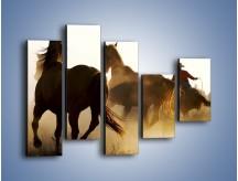 Obraz na płótnie – Cowboy wśród koni – pięcioczęściowy Z206W4