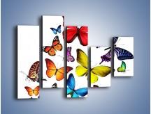 Obraz na płótnie – Kolorowo wśród motyli – pięcioczęściowy Z236W4