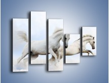 Obraz na płótnie – Białe konie i biały śnieg – pięcioczęściowy Z239W4