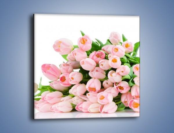Obraz na płótnie – Wiosna w tulipanach – jednoczęściowy kwadratowy K182