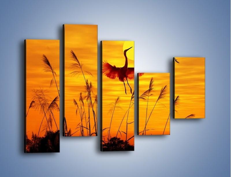 Obraz na płótnie – Czaple i zachód słońca – pięcioczęściowy Z302W4