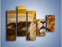 Obraz na płótnie – Dojrzały wiek lwa – pięcioczęściowy Z303W4