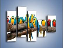 Obraz na płótnie – Kolorowe stado papug – pięcioczęściowy Z326W4