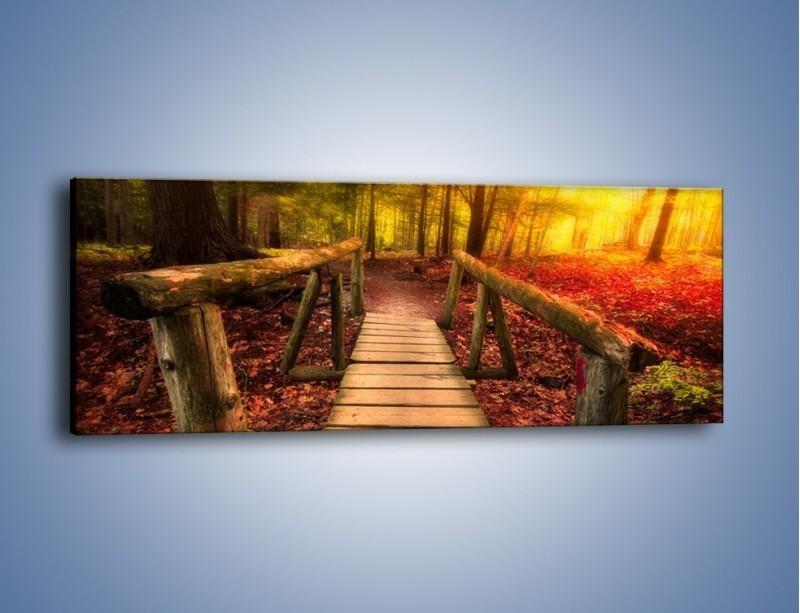 Obraz na płótnie – Krótkie przejście przez las – jednoczęściowy panoramiczny KN1330A