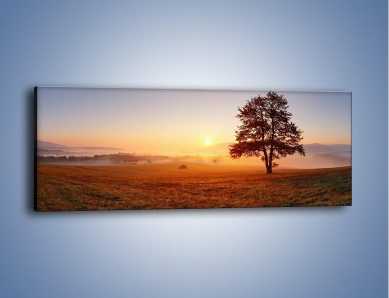 Obraz na płótnie – Krajobraz utopiony we mgle – jednoczęściowy panoramiczny KN1331A