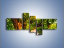 Obraz na płótnie – Drewniana kładka przez las – pięcioczęściowy GR007W5