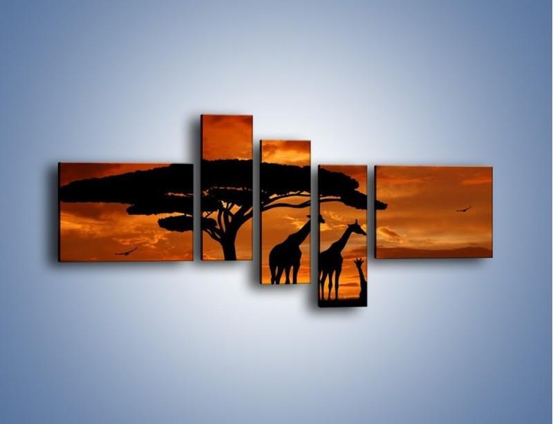 Obraz na płótnie – Żyrafy wieczorową porą – pięcioczęściowy GR266W5