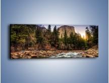 Obraz na płótnie – Chłodny dzień nad rwącym potokiem – jednoczęściowy panoramiczny KN1342A