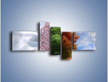 Obraz na płótnie – Cztery pory roku – pięcioczęściowy GR333W5