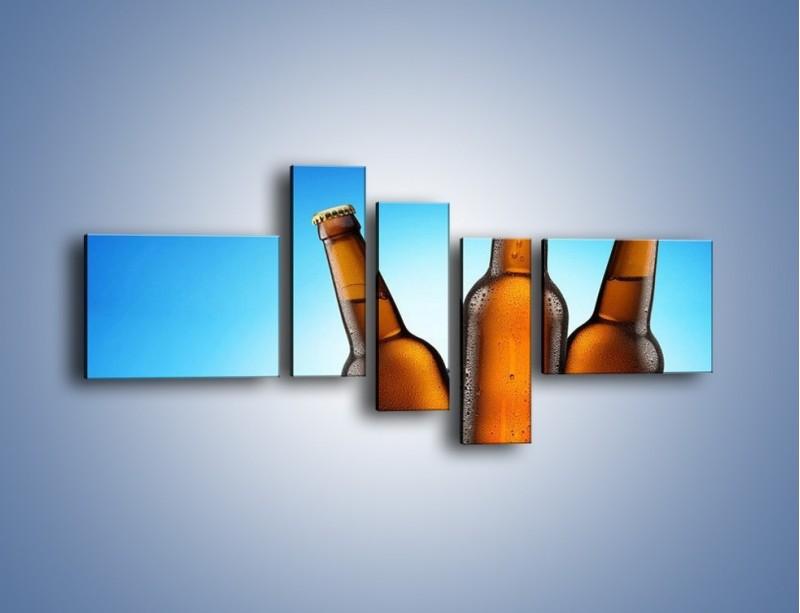 Obraz na płótnie – Szron na butelkach piwa – pięcioczęściowy JN075W5