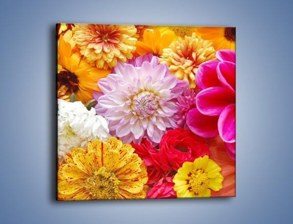 Obraz na płótnie – Letnie kwiaty z działki – jednoczęściowy kwadratowy K198