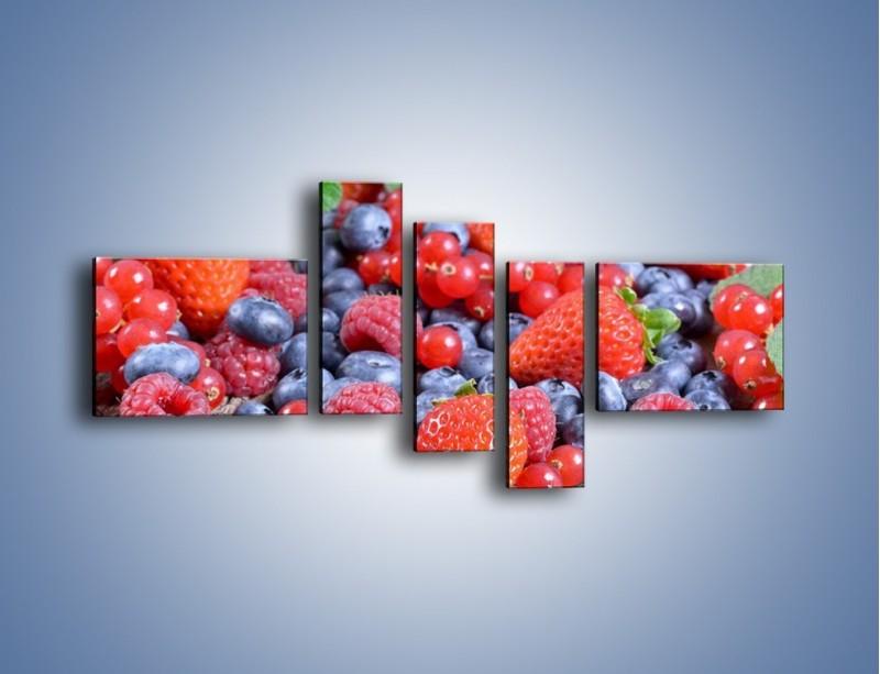 Obraz na płótnie – Owoce z działki – pięcioczęściowy JN422W5