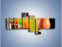 Obraz na płótnie – Barmańskie drinki – pięcioczęściowy JN433W5