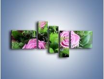Obraz na płótnie – Bukiet róż wypełniony trawką – pięcioczęściowy K068W5