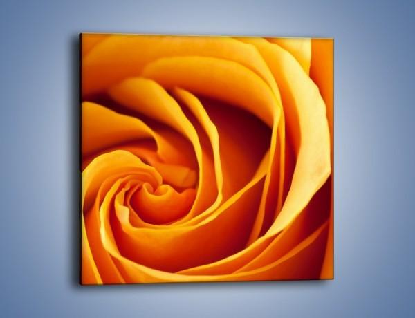 Obraz na płótnie – Wschód słońca w róży – jednoczęściowy kwadratowy K204
